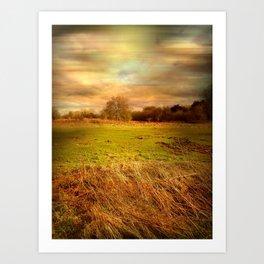 Windblown Field Art Print