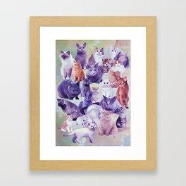 cats portrait Framed Art Print