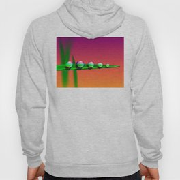 Water Drops on Grass Hoody