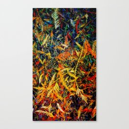 Cedar And Pine, Forest Floor Canvas Print