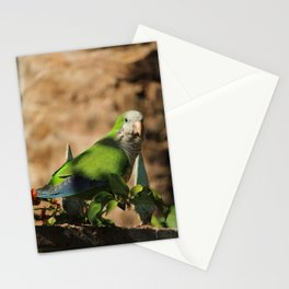 Monk Parakeet Fuerteventura Spain Stationery Cards
