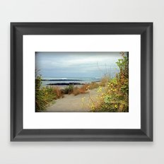 Killarney Coastline Framed Art Print