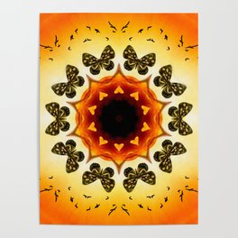All things with wings Poster