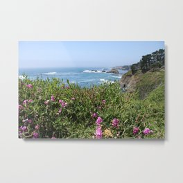 Beautiful North California Coast Metal Print