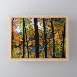 Walden Pond Autumn Forest  in Concord Massachusetts Framed Mini Art Print
