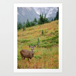 Deer at the mountain side Art Print