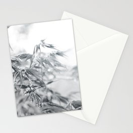 black and white fooliage Stationery Cards