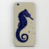 sea horse iPhone & iPod Skins featuring Sea Horse by Chrystal Elizabeth