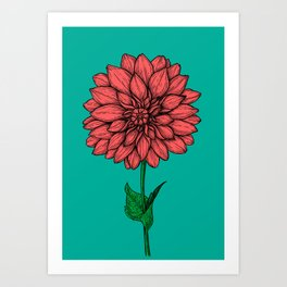 Dahlia hand drawn illustration Art Print