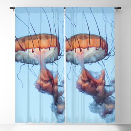 Jellyfish Floating Photography | Sea Life | Ocean | Wild Species | Rainbow Colourful Happy Blackout Curtain