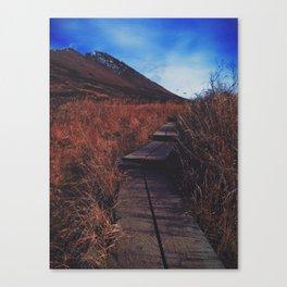 Power-line Pass Path Canvas Print