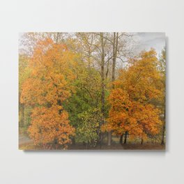 Leaning Into Autumn Metal Print