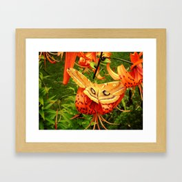 Vivid Moth Framed Art Print