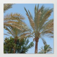 palm trees Canvas Prints featuring Palm Trees by MehrFarbeimLeben