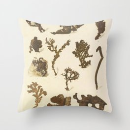 Copper Formations Throw Pillow