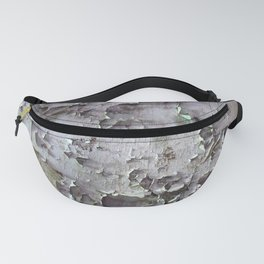 Ancient ceilings textures 132a Fanny Pack