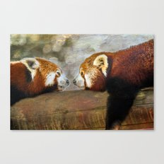 Nose to Nose Canvas Print