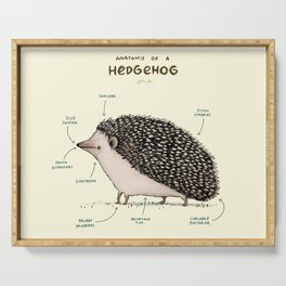 Anatomy of a Hedgehog Serving Tray