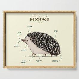 Anatomy of a Hedgehog Serving Tray