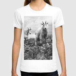 MOUNTAIN GOATS // 1 T-shirt
