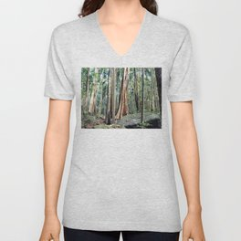 Curtis Falls Rainforest Unisex V-Neck