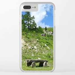 Nice spot to rest Clear iPhone Case