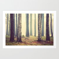 woods Art Prints featuring Woods  by Slight Clutter
