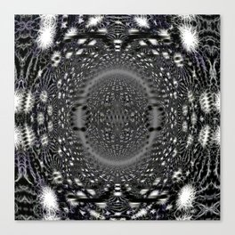The Universe Unfolds Canvas Print