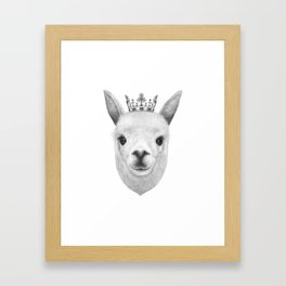 The King Lama Framed Art Print