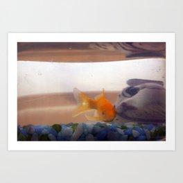 Fish mystery Art Print
