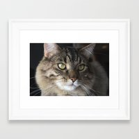 fitzgerald Framed Art Prints featuring Mr. Fitzgerald by Sarah Cate Creations