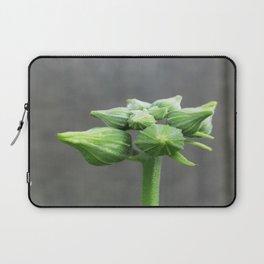 beauty in the mundane - luffa buds Laptop Sleeve
