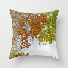 Autumnally sky Throw Pillow
