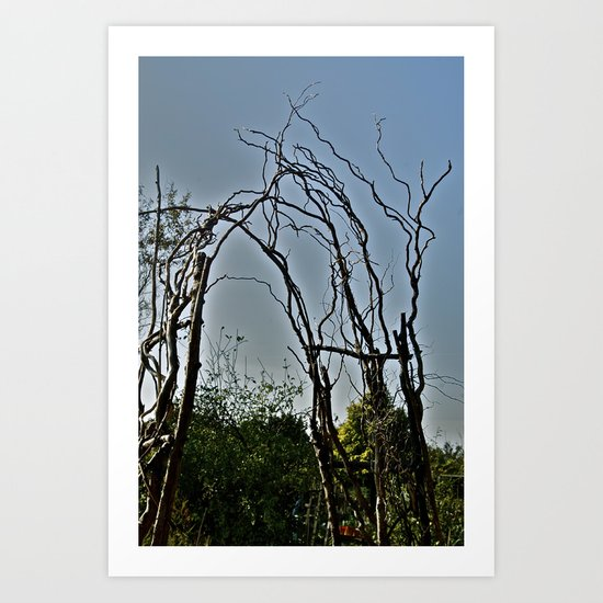 Spindly  Art Print