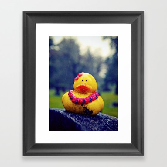 Lonely duck Framed Art Print