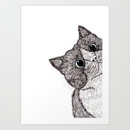 Astonishment Cat Art Print