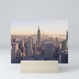 The View Mini Art Print