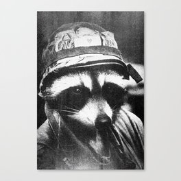 Raccoon of Fortune Canvas Print