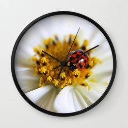 Lady Bug and her Cosmo Wall Clock
