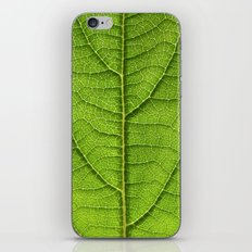 green leaf structure XII iPhone & iPod Skin