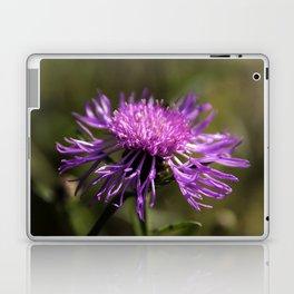 pink_lady2 Laptop & iPad Skin