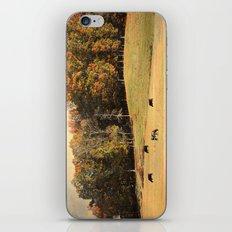 Autumn on the Farm iPhone & iPod Skin