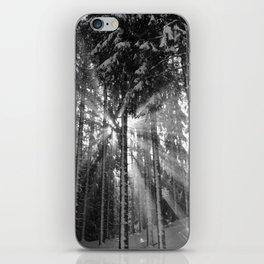 Black and White Winter Wonderland iPhone Skin