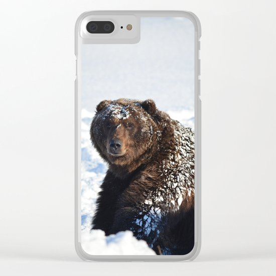 Alaskan Grizzly in Snow Clear iPhone Case