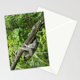 Three-toed sloth climbing tree Stationery Cards