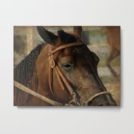 At the Horse Show Metal Print