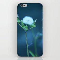 One More Wish (Blue) iPhone & iPod Skin