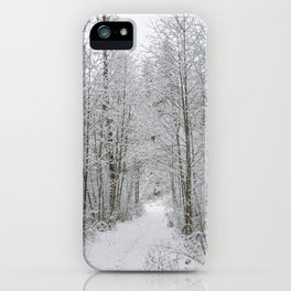 Snow Covered Trees Line The Path iPhone Case