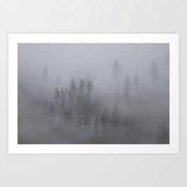 Olympic Fog Art Print