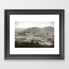 Aviary Framed Art Print